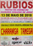 Cartel de fiestas de Rubios.