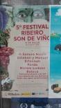Cartel festival Ribeiro son de viño
