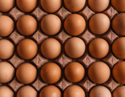 Foto de huevos.