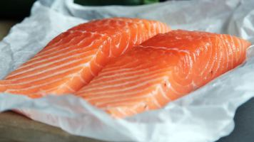 foto de salmon